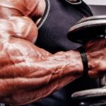 Brachialis (shoulder muscle) learn how to pump it up and increase the volume of your biceps.