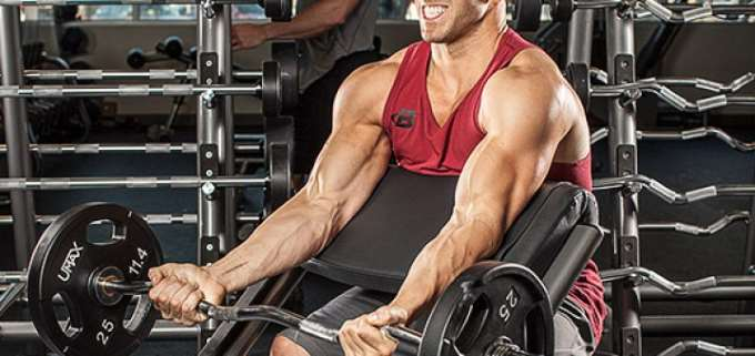 pump up the brachialis